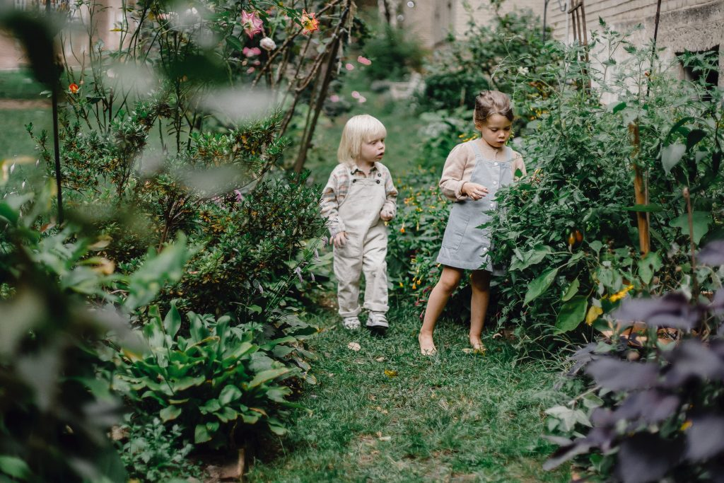 attractions in agritourism for kids